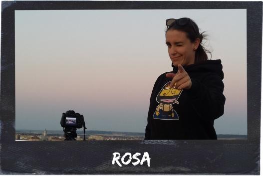 Erizo Rosa.jpg
